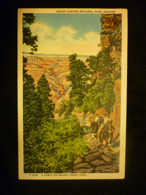 Vintage Post Card of The Grand Canyon