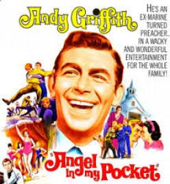 Jerry Van Dyke was in this film