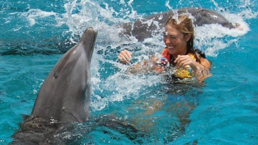 DOLPHIN SWIM ADVENTURE IN GRAND CAYMAN