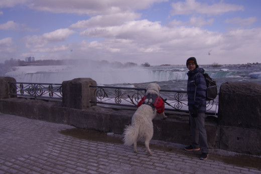 Niagara Falls being enjoyed by K2 and my son here, are based over sedimentary rock.