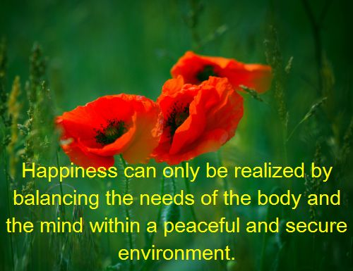 Well being is multidimensional