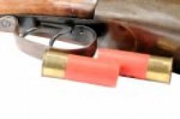 Shot gun and 2 shells.