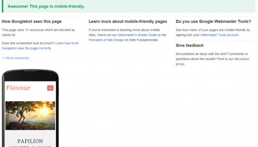 Google's Mobile-Friendly Test Page