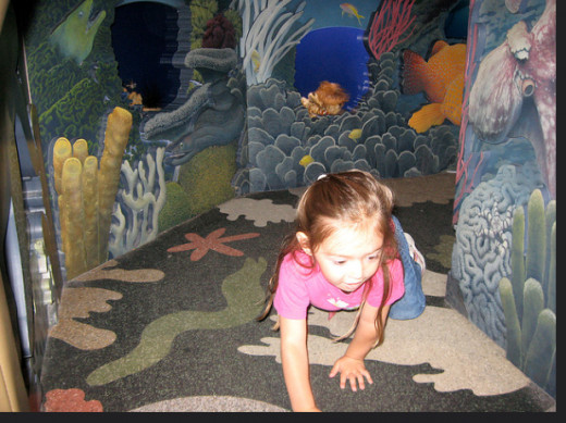 Children can spend all day in the Splash Zone— crawling, playing, and exploring. There's even a section for babies!