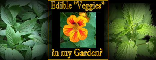 Delicious edible plants