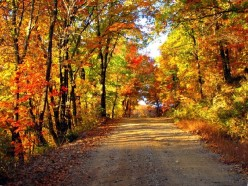 Fall-like Weather