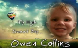 How did 3-year-old Owen Collins die, and why hasn't the autopsy and toxicology reports come back?