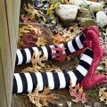 Halloween Witch Crafts Ideas