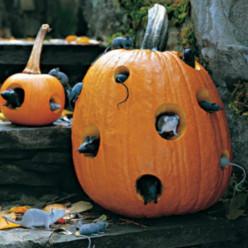 Best Outdoor Halloween Crafts