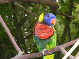 Portland, Oregon Zoo