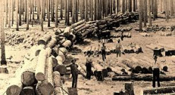 Photo of Aldridge Mill, an early sawmill.