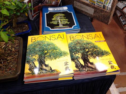 Best book for a beginner | Bonsai Nut