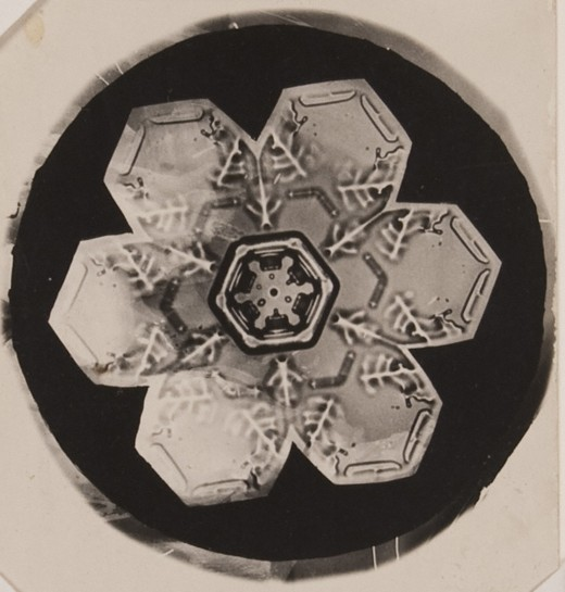 "A snow ""crystal"" captured by Snowflake Bentley in 1905."