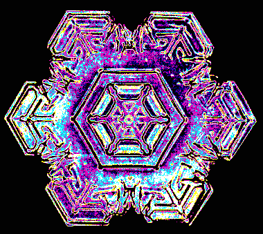 A colorized version of one of Bentley's snowflakes.