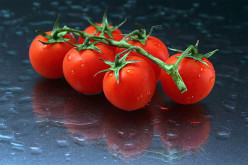 Have you ever grown your tomatoes from seed and do you have any good tips for that?