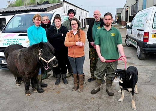 Volunteers and animals at Easterleigh face having no premises due to the sanctuary's lease being terminated.