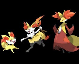 Fennekin Evolution Photos