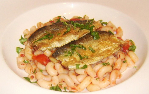 Pan fried herring fillets on a bed of macaroni in simple tomato sauce