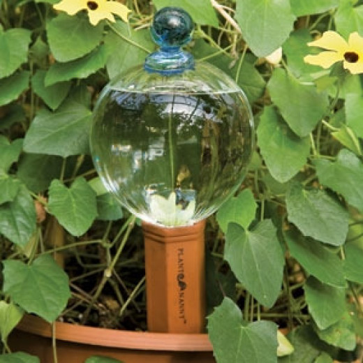 Glass reservoirs are available with terracotta spouts that slowly release water into the soil.