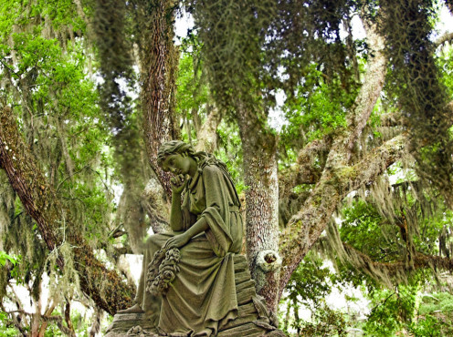 Thinking For Eternity. She was so serene looking amid the Spanish moss.