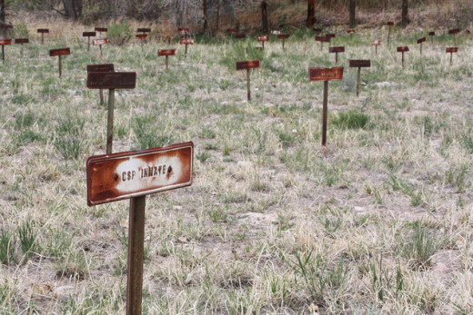 CSP INMATE Markers on Woodpecker Hill in Greenwood Cemetery in Canon City, Colorado.