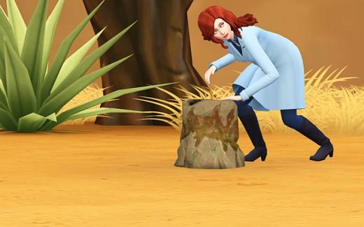 Delia checks out a strange stump.
