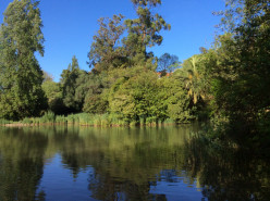 Gulbenkian Park and the Calouste Gulbenkian Foundation in the heart of Lisbon