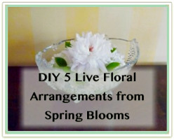 Spring Blooms Inspired 5 Live Floral Arrangements