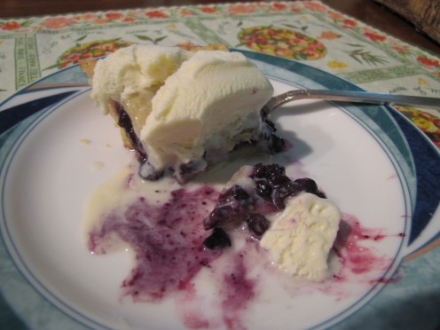 Who can resist fresh fruit for dessert when it looks like this? You can cook the blueberries to make a sauce to serve over the ice cream too.
