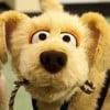 george looney profile image