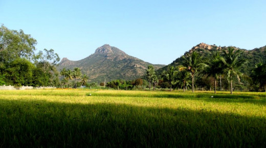 The Arunachalam hill 1