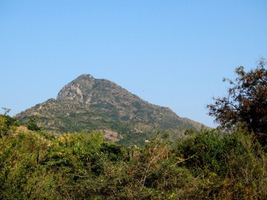 The Arunachalam hill