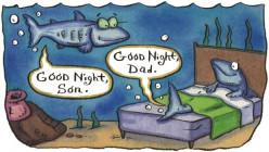 Do fish sleep?they always look like they are awake.