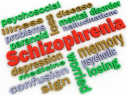 Living with Schizophrenia – Role of Family And Society In Rehabilitation Process