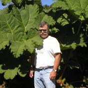 Jerry Watson profile image