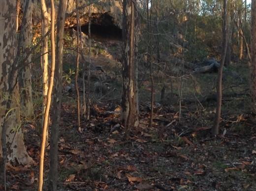 A Dingo cave