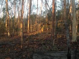 Rocky outcrop and dingo caves