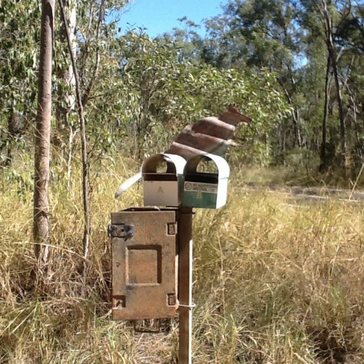 Our Mailbox (notice the correlated iron wallaby)