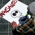 "Neil Young Protests Against Monsanto and Starbucks in New Album ""The Monsanto Years"""