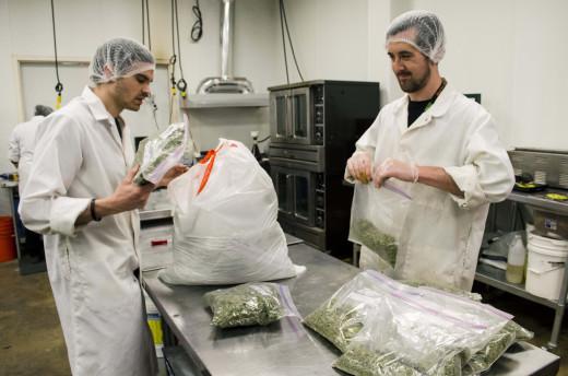 Dixie Elixirs staff inspect trim