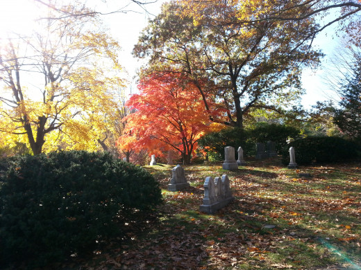 Mt. Auburn Cemetery, Cambridge. On sunny fall days, every corner of New England resembles a painting.