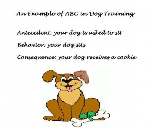 How dogs learn, how to train your dog