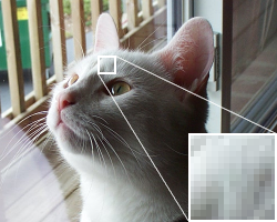 'Pixels' make up RASTER Graphics