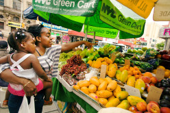 Balancing the Scales:  Taking Individual Strides in Making Affordable (Green)Foods More Profitable