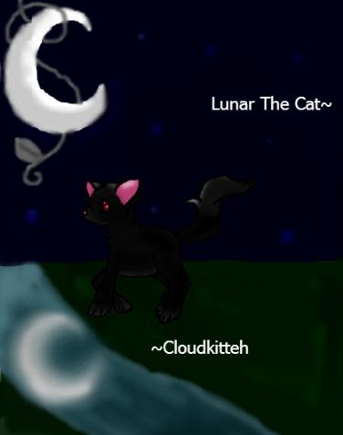 Lunar the Cat