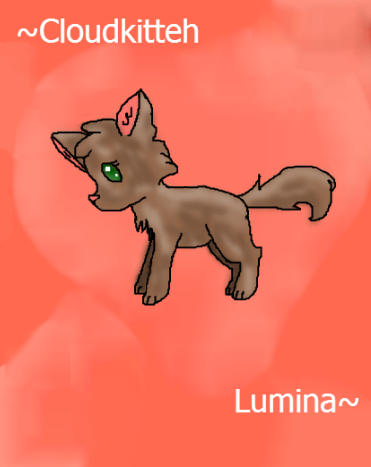 Lumina the brown wolf