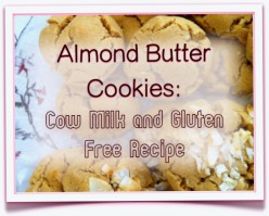 Almond Butter Cookies with Coconut: Gluten and Cow Milk Free