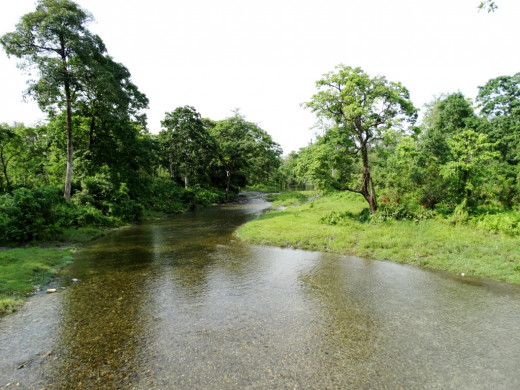 Hollong River