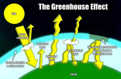 Do you think that there's something to the greenhouse effect and global warming?