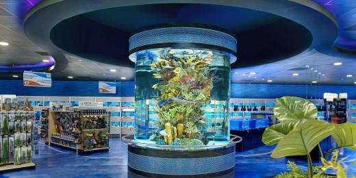 Beautiful Aquarium Four Your House Plan Design